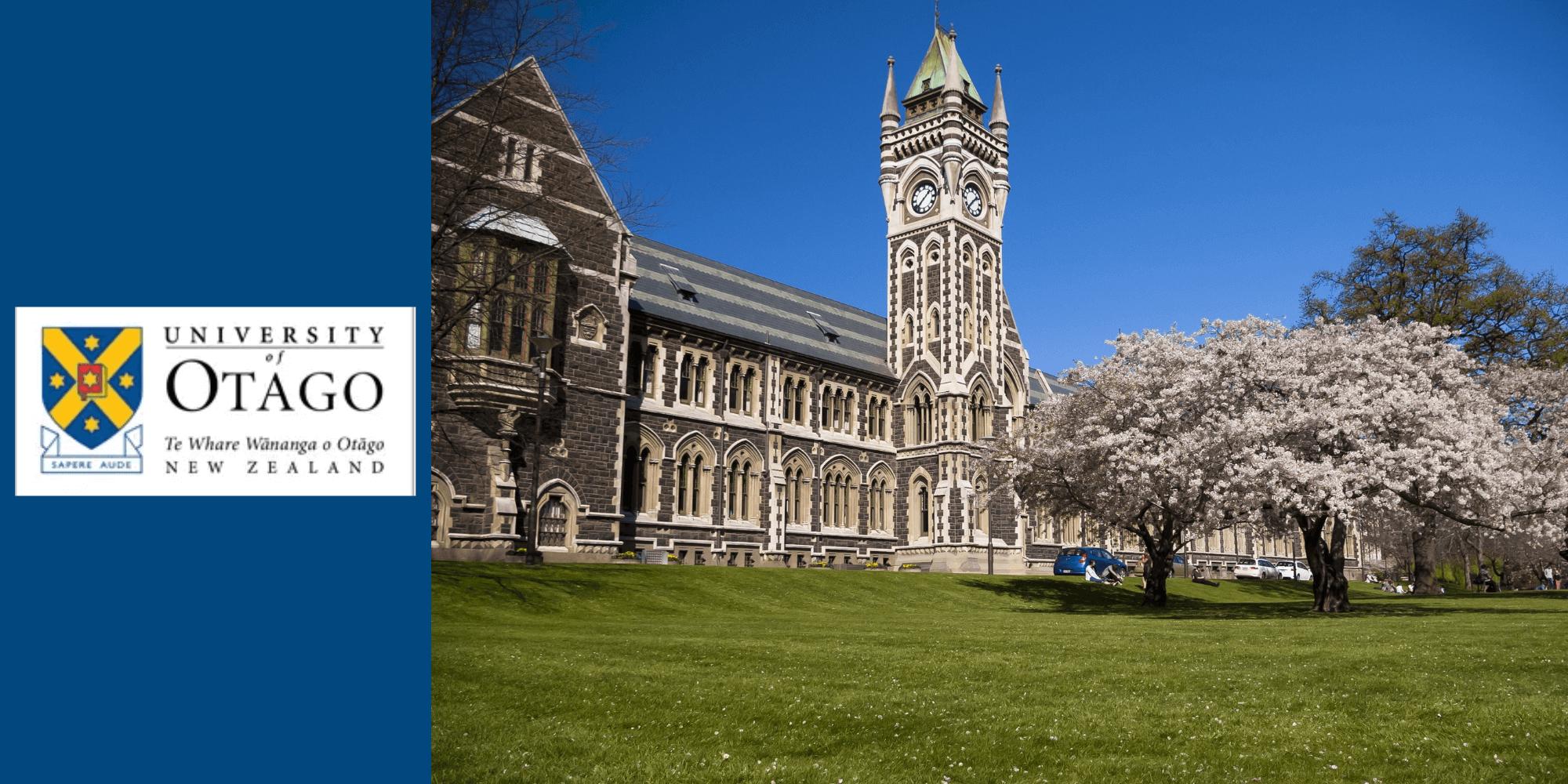 New Zealand Study Consultants